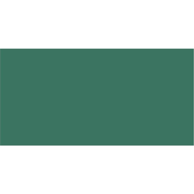 6000 Patinagrün